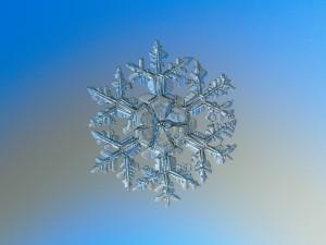 Snowflake Circle
